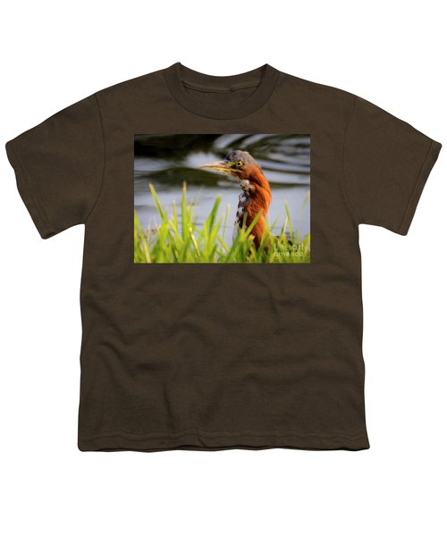 Green Heron Closeup  Youth T-Shirt