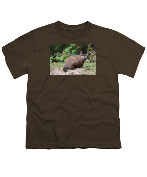 Groundhog  0590 Youth T-Shirt by Jack Schultz