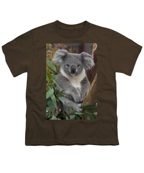Koala Phascolarctos Cinereus Youth T-Shirt