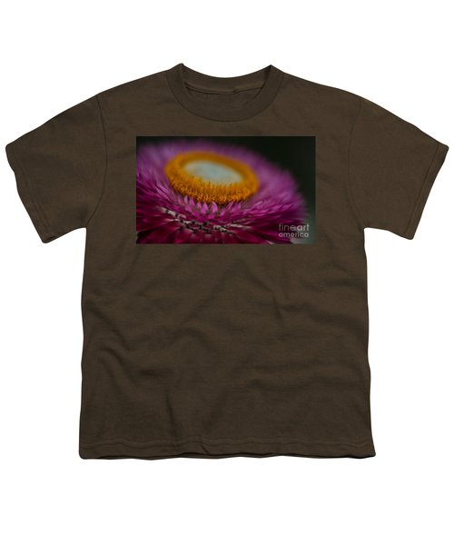 Pink And Yellow Strawflower Close-up Youth T-Shirt