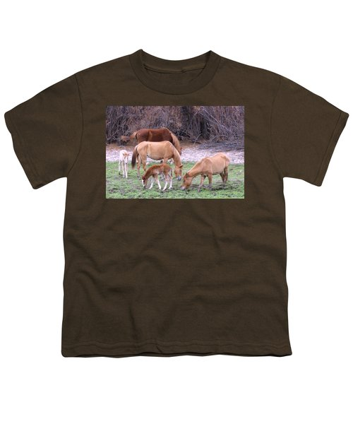 Salt River Wild Horses In Winter Youth T-Shirt