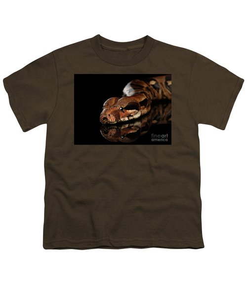 The Boa Constrictors, Isolated On Black Background Youth T-Shirt by Sergey Taran