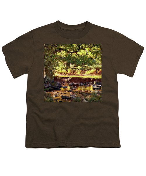 The River Lin , Bradgate Park Youth T-Shirt
