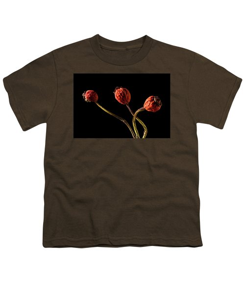 Three Rose Hips Youth T-Shirt