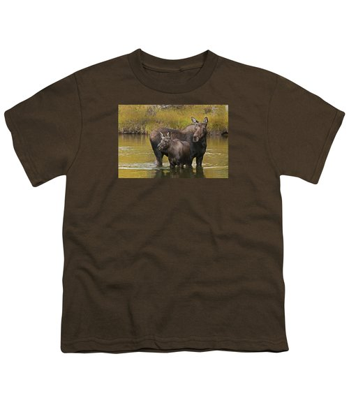 Watchful Moose Youth T-Shirt by Gary Lengyel