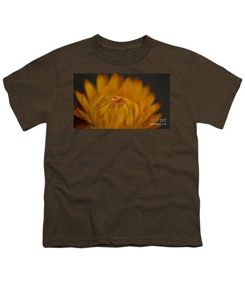 Yellow Strawflower Blossom Close-up Youth T-Shirt