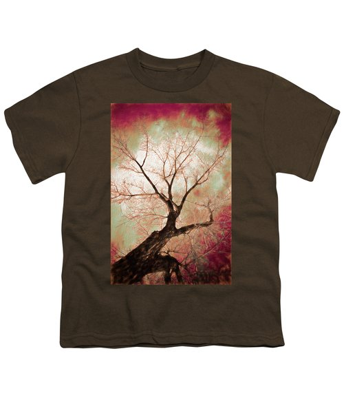 Youth T-Shirt featuring the photograph Climbing Red Fiery by James BO Insogna