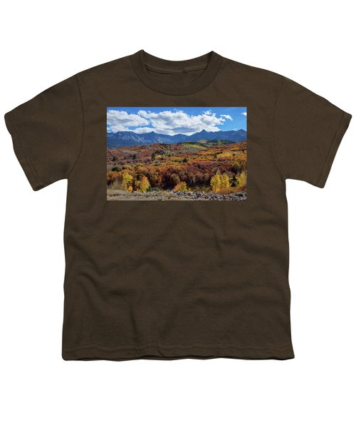 Youth T-Shirt featuring the photograph Colorado Color Lalapalooza by James BO Insogna