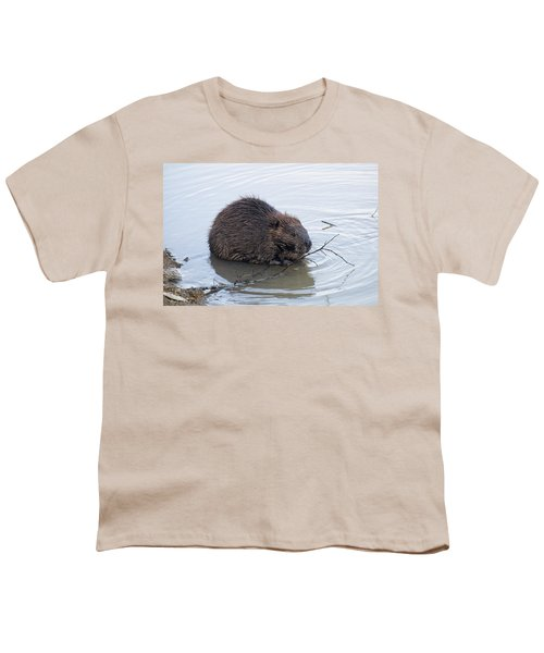 Beaver Chewing On Twig Youth T-Shirt by Chris Flees