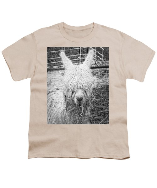 Black And White Alpaca Photograph Youth T-Shirt by Keith Webber Jr