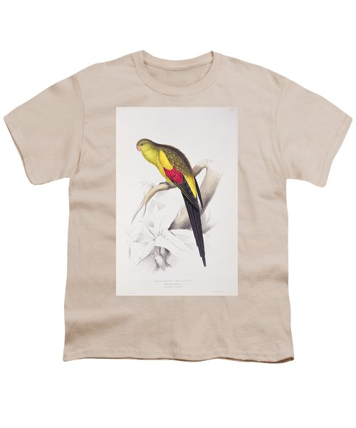 Black Tailed Parakeet Youth T-Shirt by Edward Lear