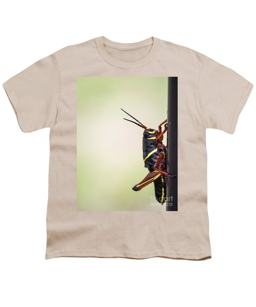 Giant Eastern Lubber Grasshopper Youth T-Shirt by Edward Fielding