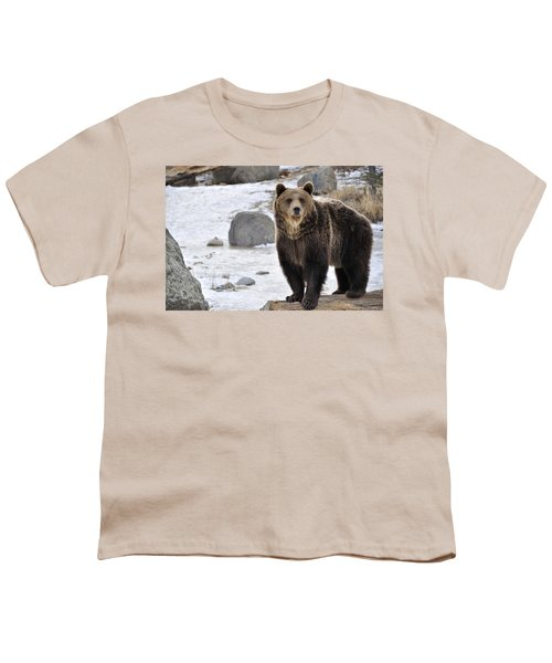 Montana Grizzly  Youth T-Shirt