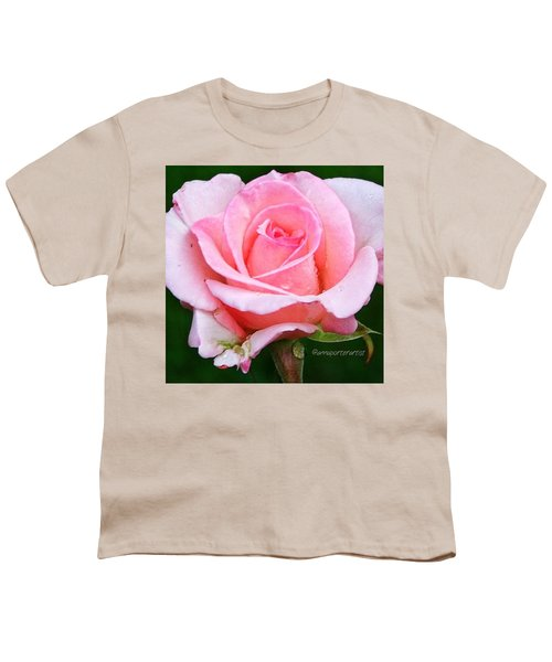 Pale Pink Beauty Youth T-Shirt
