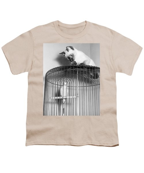 The Parakeet And The Cat Youth T-Shirt by Underwood Archives