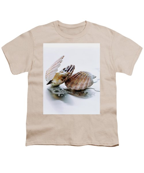 Two Scallops Youth T-Shirt