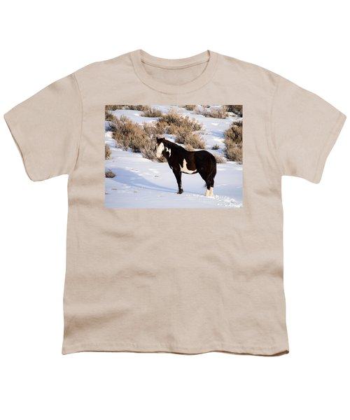 Wild Horse Stallion Youth T-Shirt