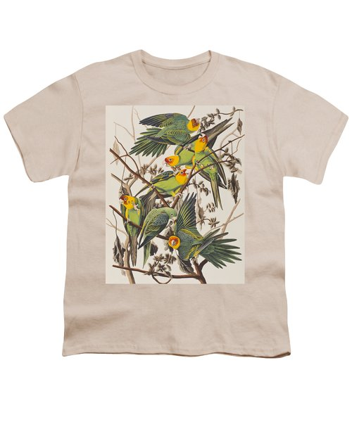 Carolina Parrot Youth T-Shirt by John James Audubon