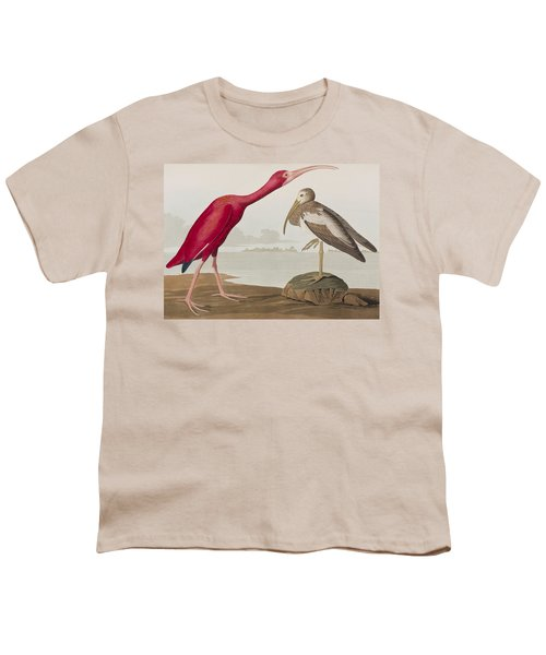 Scarlet Ibis Youth T-Shirt