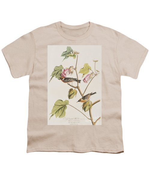 Bay Breasted Warbler Youth T-Shirt by John James Audubon
