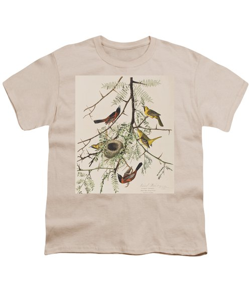 Orchard Oriole Youth T-Shirt