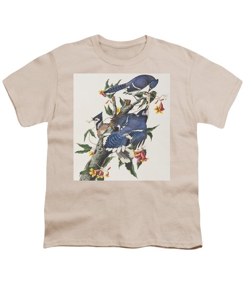 Blue Jay Youth T-Shirt by John James Audubon