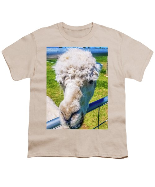 Alpaca Yeah Youth T-Shirt