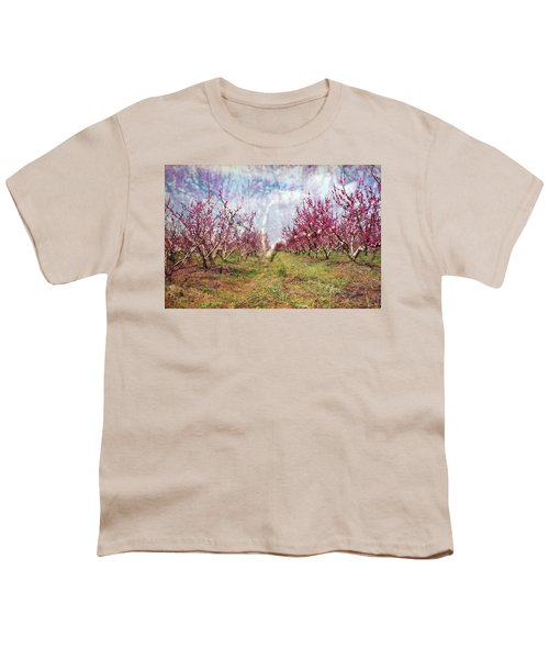 An Orchard In Blossom In The Golan Heights Youth T-Shirt