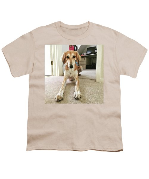 Ava On Her First Birthday #saluki Youth T-Shirt by John Edwards
