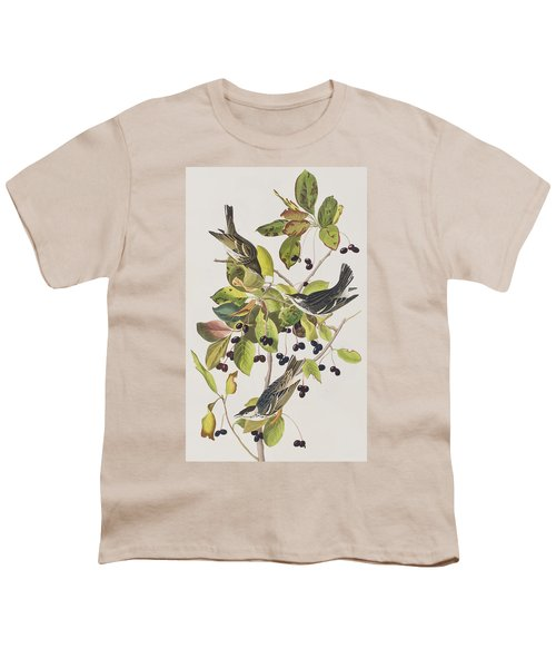 Black Poll Warbler Youth T-Shirt by John James Audubon