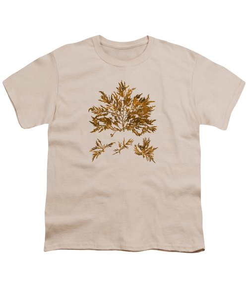 Youth T-Shirt featuring the mixed media Brown Seaweed Marine Art Chylocladia Clavellosa by Christina Rollo