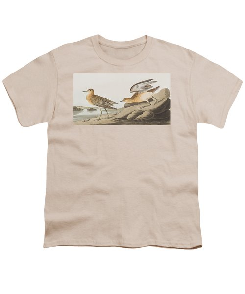 Buff Breasted Sandpiper Youth T-Shirt