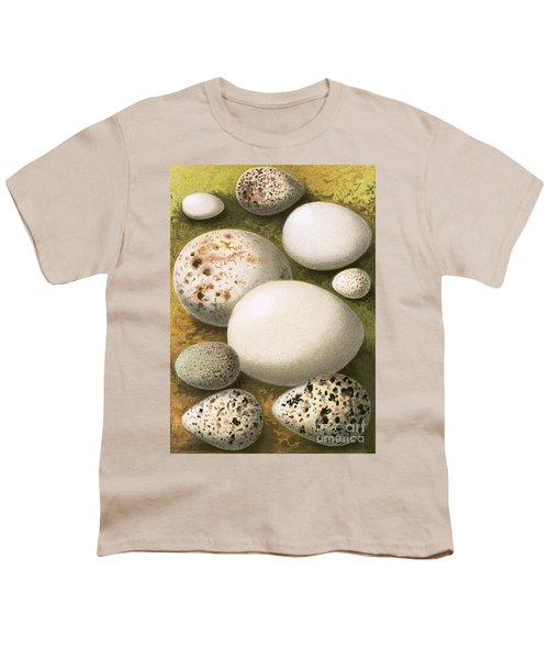 Eggs Youth T-Shirt