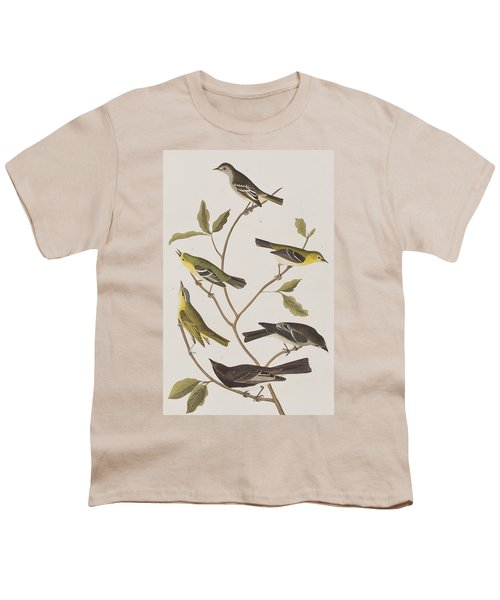 Fly Catchers Youth T-Shirt by John James Audubon