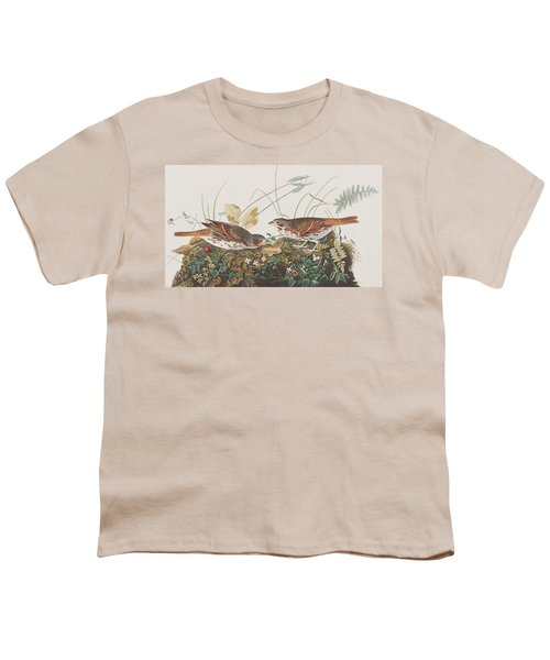 Fox Sparrow Youth T-Shirt by John James Audubon