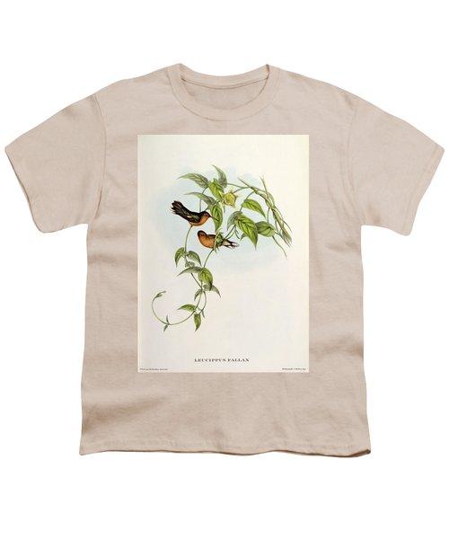 Leucippus Fallax Youth T-Shirt by John Gould