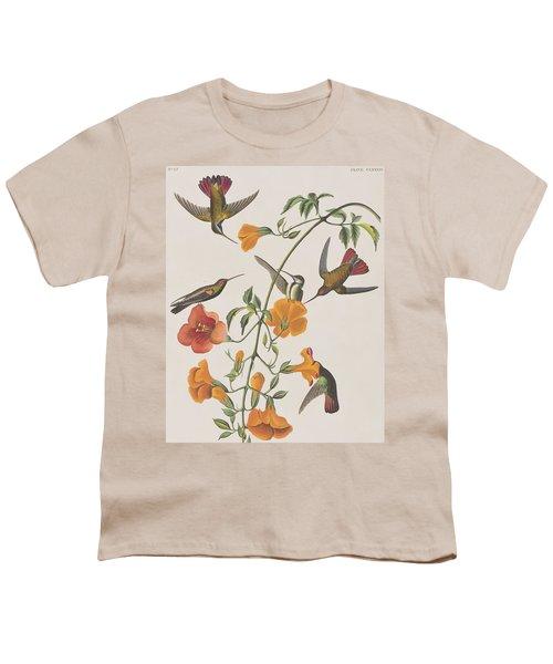 Mango Humming Bird Youth T-Shirt by John James Audubon