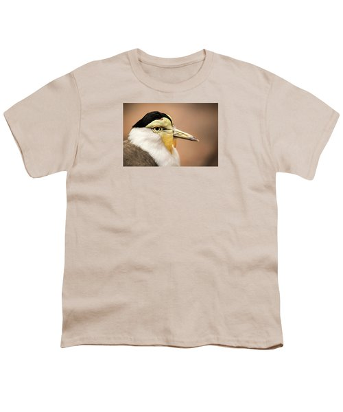 Masked Lapwing Youth T-Shirt by Don Johnson