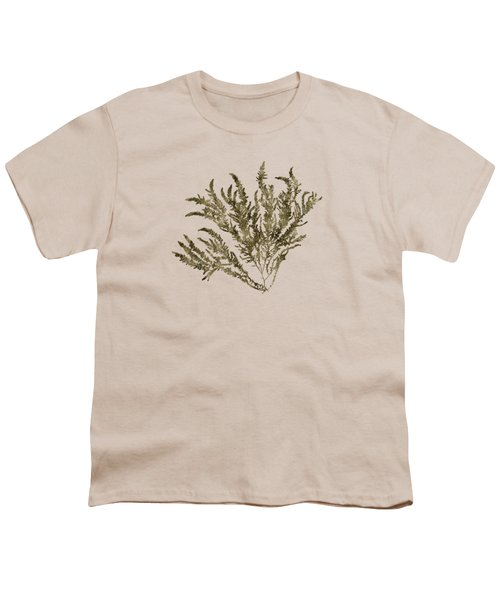 Ocean Seaweed Plant Art Ptilota Sericea Square Youth T-Shirt by Christina Rollo