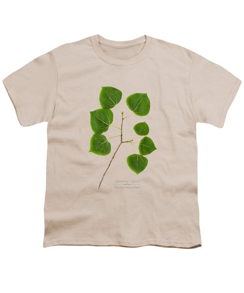 Quaking Aspen Youth T-Shirt by Christina Rollo