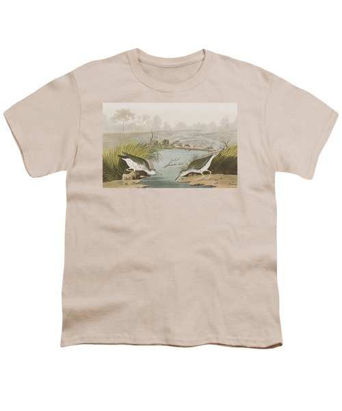 Spotted Sandpiper Youth T-Shirt