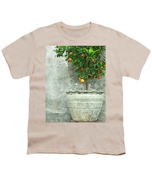 Tangerine Tree In Old Clay Pot Youth T-Shirt