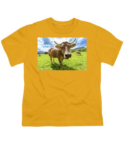 Youth T-Shirt featuring the photograph Cow In Meadow by MGL Meiklejohn Graphics Licensing
