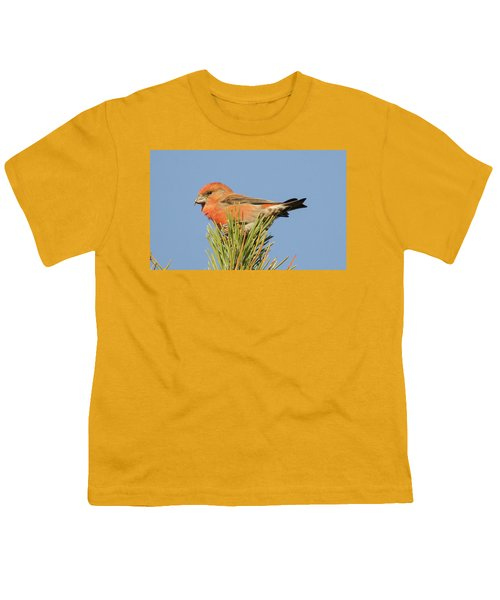 Crossbill Youth T-Shirt