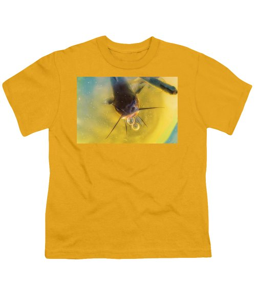 Fish In A Barrell Youth T-Shirt