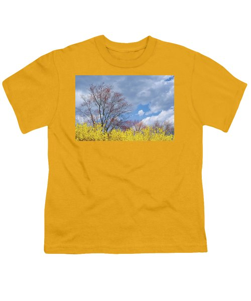 Youth T-Shirt featuring the photograph Spring 2017 by Bill Wakeley