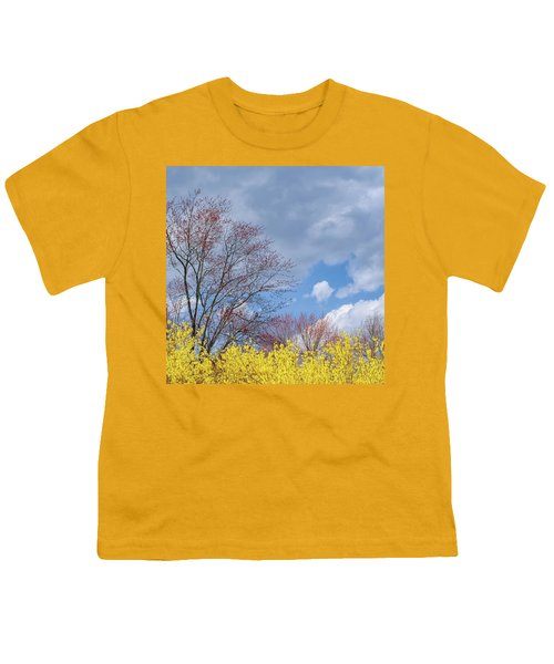 Youth T-Shirt featuring the photograph Spring 2017 Square by Bill Wakeley