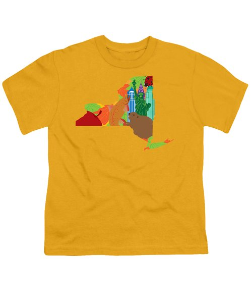 State Of New York Official Map Symbols Youth T-Shirt by Jit Lim