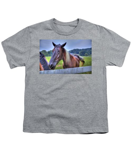 Youth T-Shirt featuring the photograph Black Horse At A Fence by Jonny D