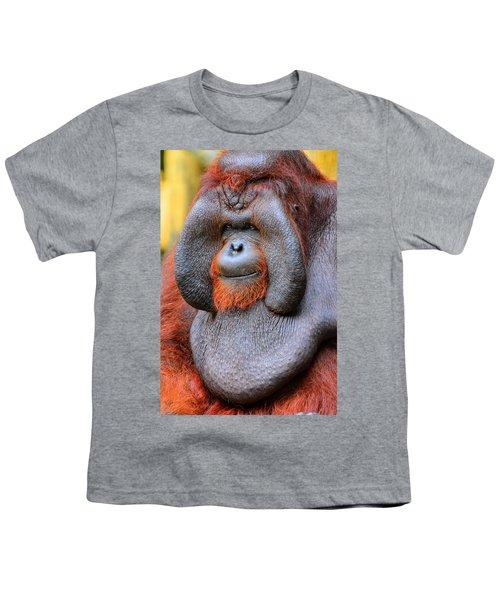Bornean Orangutan Iv Youth T-Shirt by Lourry Legarde